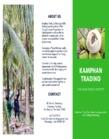 Kamphan Trading