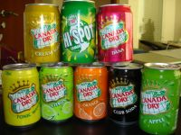 Canada Dry Soda, Tonic & Other Canada Dry Products - Suppliers Of ...