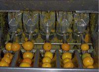 주황색 Juicer...