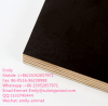 black or brown Film Faced Plywood for construction with logo for sale