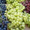 Свежие виноградины глобуса
