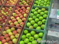 맛좋은 사과 | 왕 축...