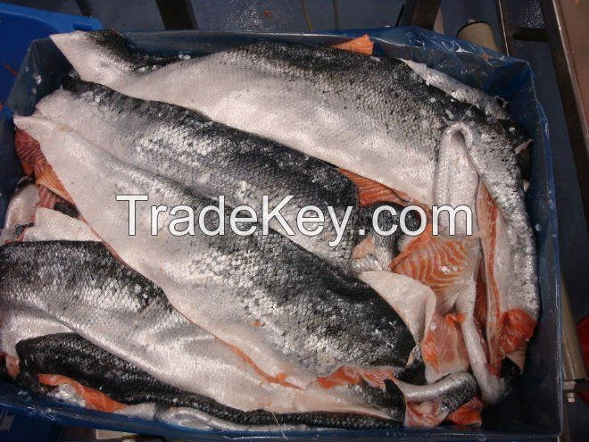 Fresh frozen salmon fish top quality by south africa for Best frozen fish