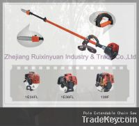 Pole Extendable Chain Saw (2.8M-4.1M)-Zhejiang Ruixinyuan Industry & Trade Co., Ltd