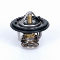 Car Thermostat