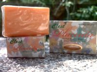 CLEST PLACENTA HERBAL BEAUTY SOAP- ANTI AGING AND SKIN WHITENING-JANMIAH GENERAL MERCHANDISE