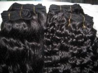 Malaysian, Mongolian, Brazilian, Chinese, Indian Virgin hair for sale