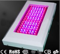 Sell high power led grow light-WENZHOU BOZHONG Import and Export Co Ltd