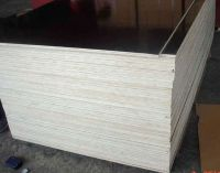 Film faced plywood-FUDA FOREST INDUSTRY CO., LTD