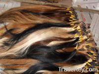 Selling I- tip pre-bonded hair extension-Guangzhou Grace Hair Fashion Co., LTD