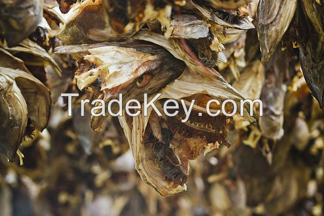 Wholesale 100% Dry Stock Fish, Dried fish maw, anchovy fish, seafood, Canned Seafod, very cheap