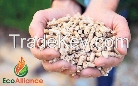 Wood Pellets (ENplus A1) 85 euro FCA