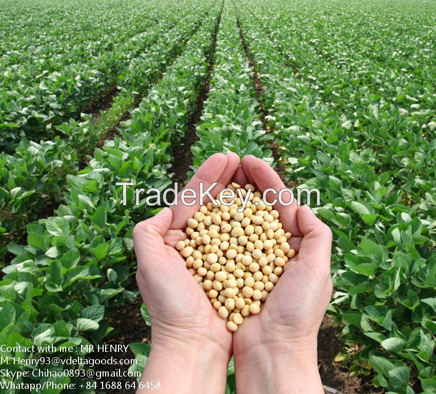 Best offer for Soy Bean Meal from VietNam