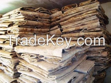 Dry and Wet Salted Donkey Hides / Sheep hides / Cow Hides