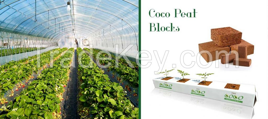 Coco Peat and Grow Bags