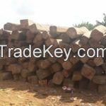 Wood | Kosso Wood