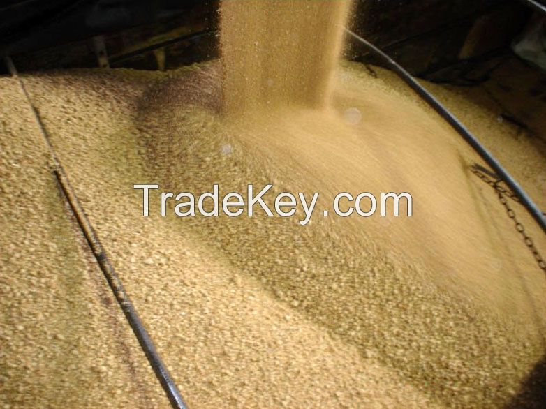 Born Meal, Corn Gluten Meal, Fish Meal, Chicken Feed, Soybean Meal