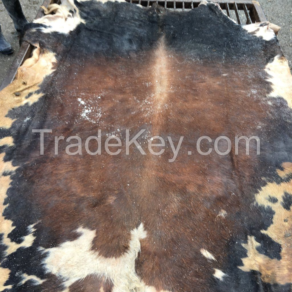 wet salted hides, cows, bulls, pigs , heads and wet blue hides