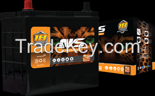 NS Automotive Battery