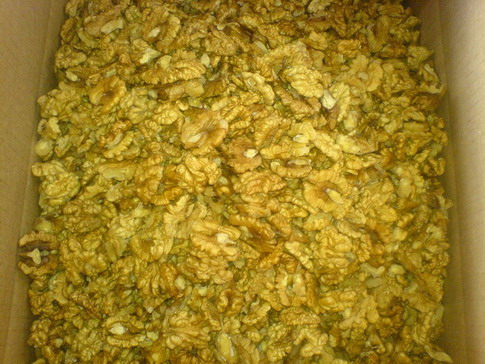 Walnut Kernels | Dried Fruits | Walnut Suppliers | Walnut Exporters | Walnut Manufacturers | Cheap Walnut | Wholesale Walnut | Discounted Walnut | Bulk Walnut | Walnut Buyer | Import Walnut |