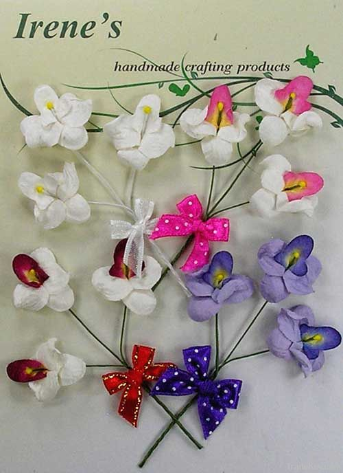 Mini Orchid Pack (12)