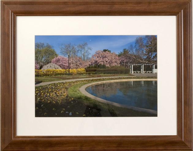 James Mason Garden