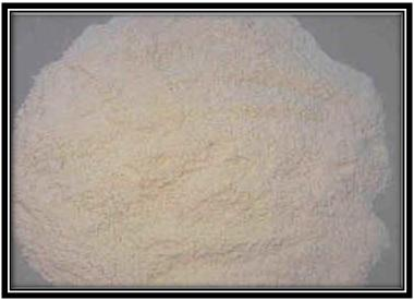 Cement (42.5)