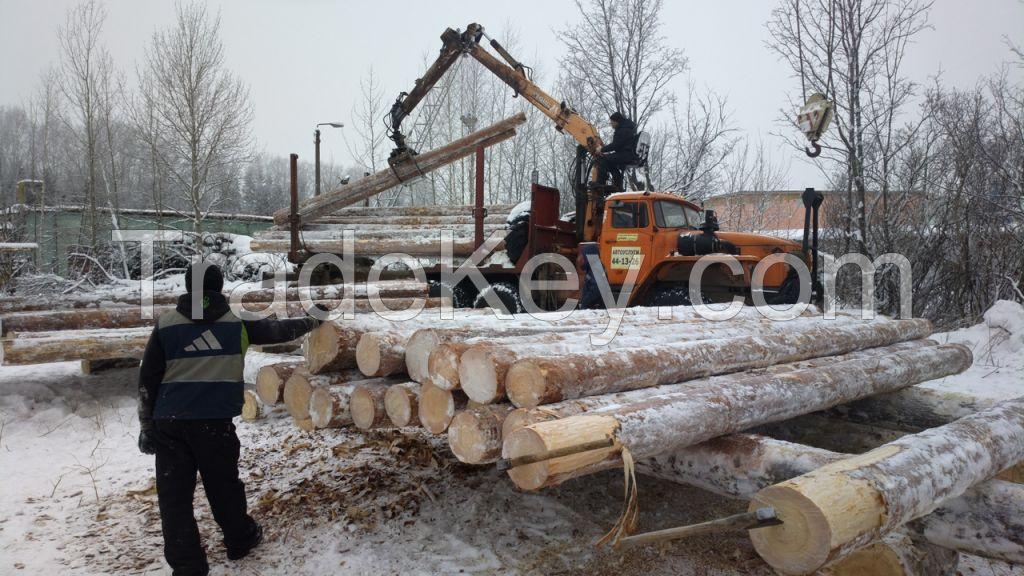 Wood (timber) from Russia, Siberia: oak, aspen, alder.