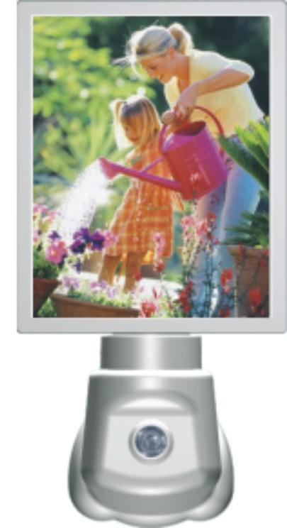 photo frame  light