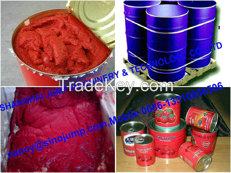 Xinjiang Aseptic Package Tomato Paste Concentrate Brix 28-30% Hot Break