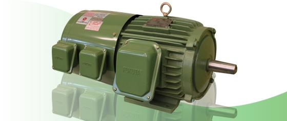 Inverter Duty Motor Foot B3 Products Offered By Promax
