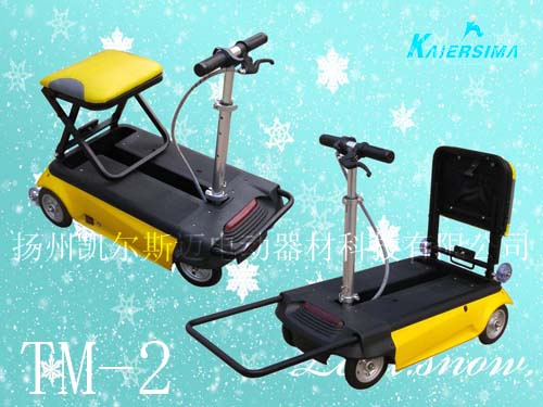 electric scooter (tm-2)