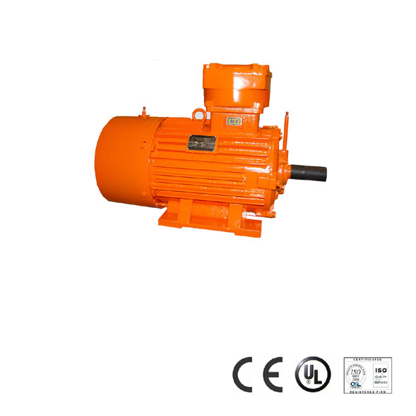 Flameproof Three Phase Induction Motor For Underground