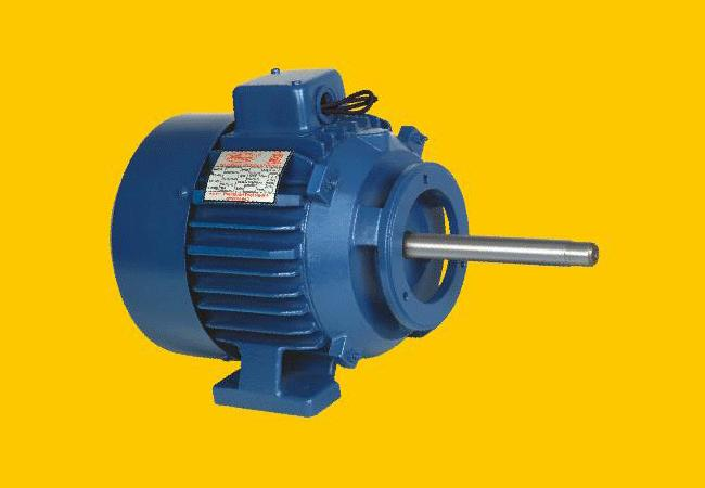 Long shaft electric motors by precision tool room india for Electric motor shaft types