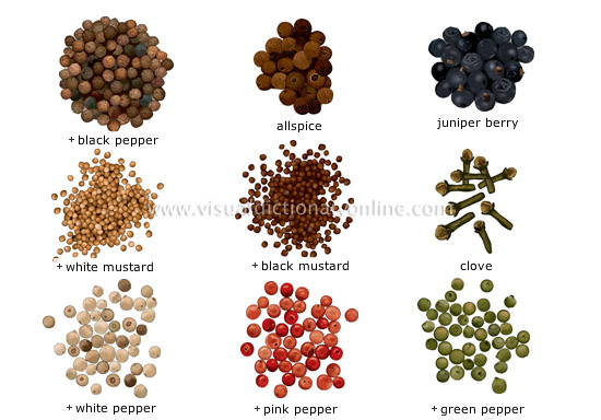 All types of SPICES By saravana agencies, India