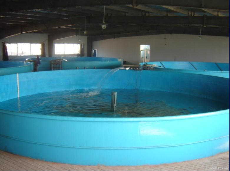 fibreglass fish tank fiberglass fish tank frp fish for