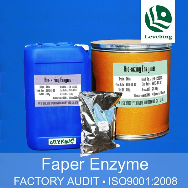 enzymes and paper