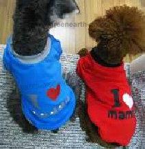 Fashionable Pet clothes