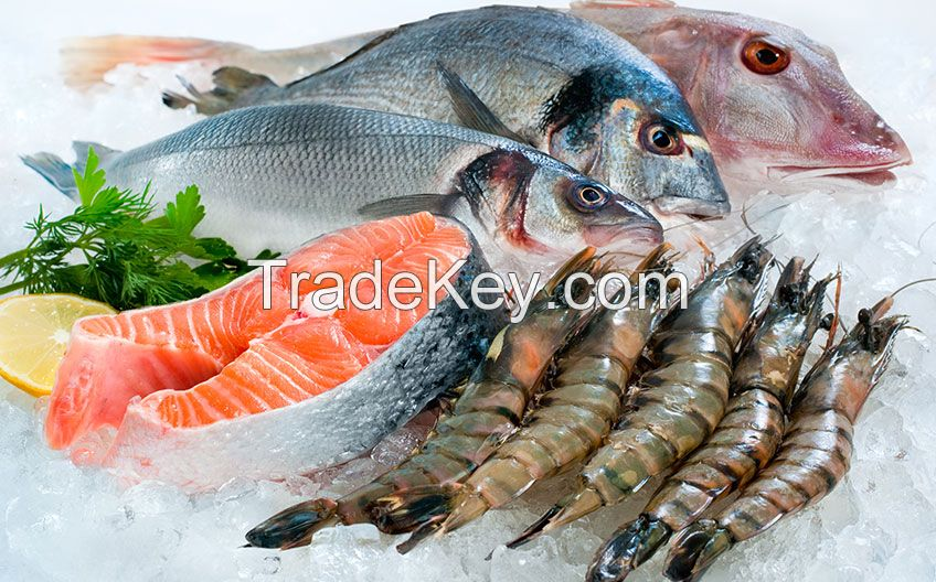 Best Frozen Seafood Fishes, Shrimps, Crabs, Pallocks, Fillets, catfish, Squid, Octopus, Lobster