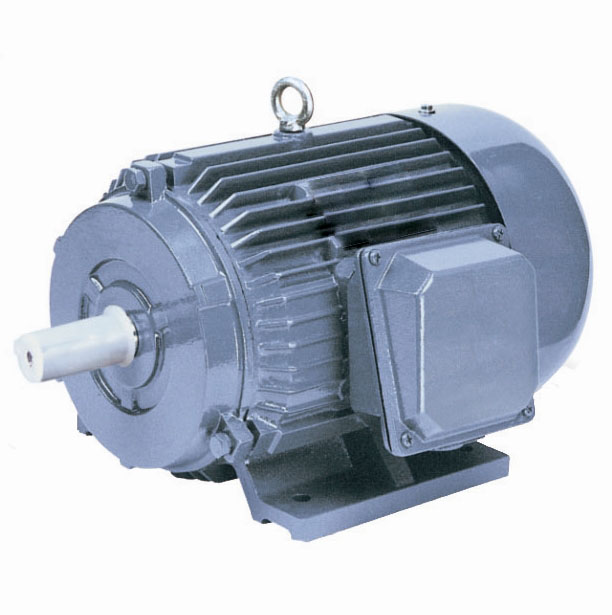 Y series three phase induction motor by xinwang motor for 3 phase induction motor specifications