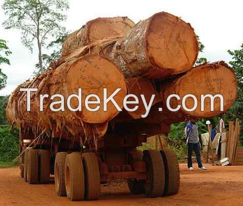 Timber for sale in Cameroon