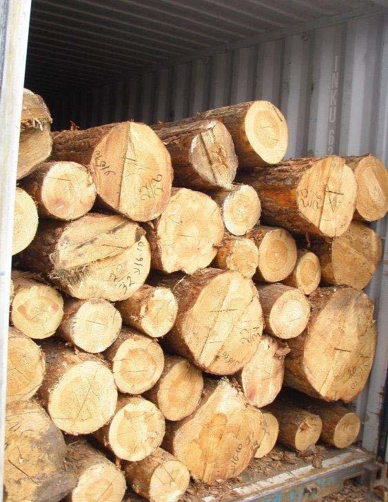 Wood (round timber)