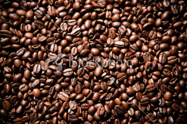 export Arabica Coffee beans,Arabica Coffee bean importer,Arabica Coffee beans buyer,buy Arabica Coffee beans,Arabica Coffee bean manufacturer,best Arabica Coffee bean exporter,low price Arabica Coffee beans,best quality Arabica Coffee bean,Coffee bean sup