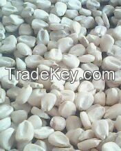 White Non GMO Maize
