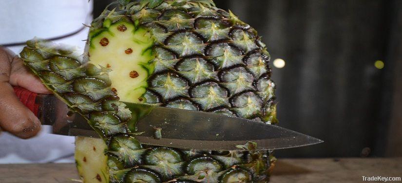 Fresh Pineapple (F200)