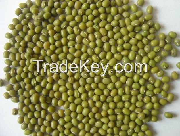 Kidney Beans , Chickpeas , Green Mung Beans, Peas, Lentils