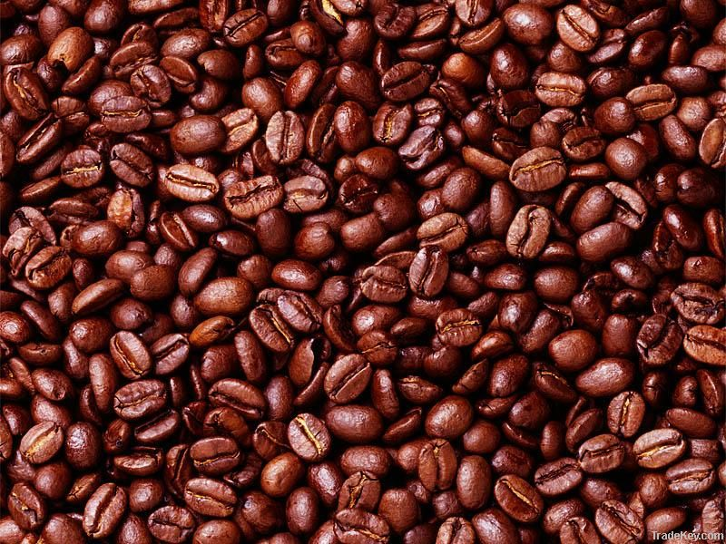 Export Arabica Coffee Beans | Arabica Coffee Bean Importer | Arabica Coffee Beans Buyer | Buy Arabica Coffee Beans | Arabica Coffee Bean Wholesaler | Arabica Coffee Bean Manufacturer | Best Arabica Coffee Bean Exporter | Low Price Arabica Coffee Beans | B