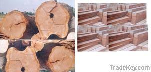 Sawn Hard Wood