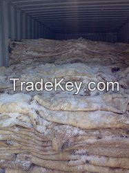 Wet Salted Donkey and Horse Hides
