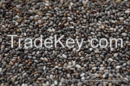 Premium Chia Seeds